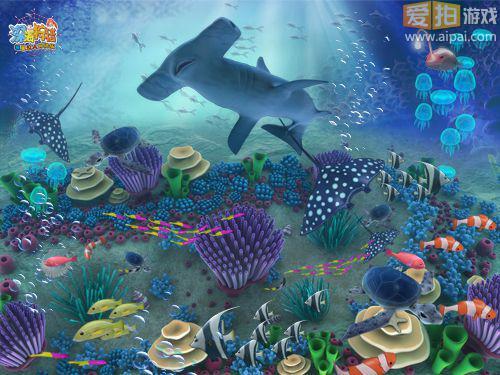 其实,在神秘海底最深处丽的宫殿,分别住着4大家族12种鱼类,它们之间有