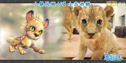超萌可爱狮子简笔画